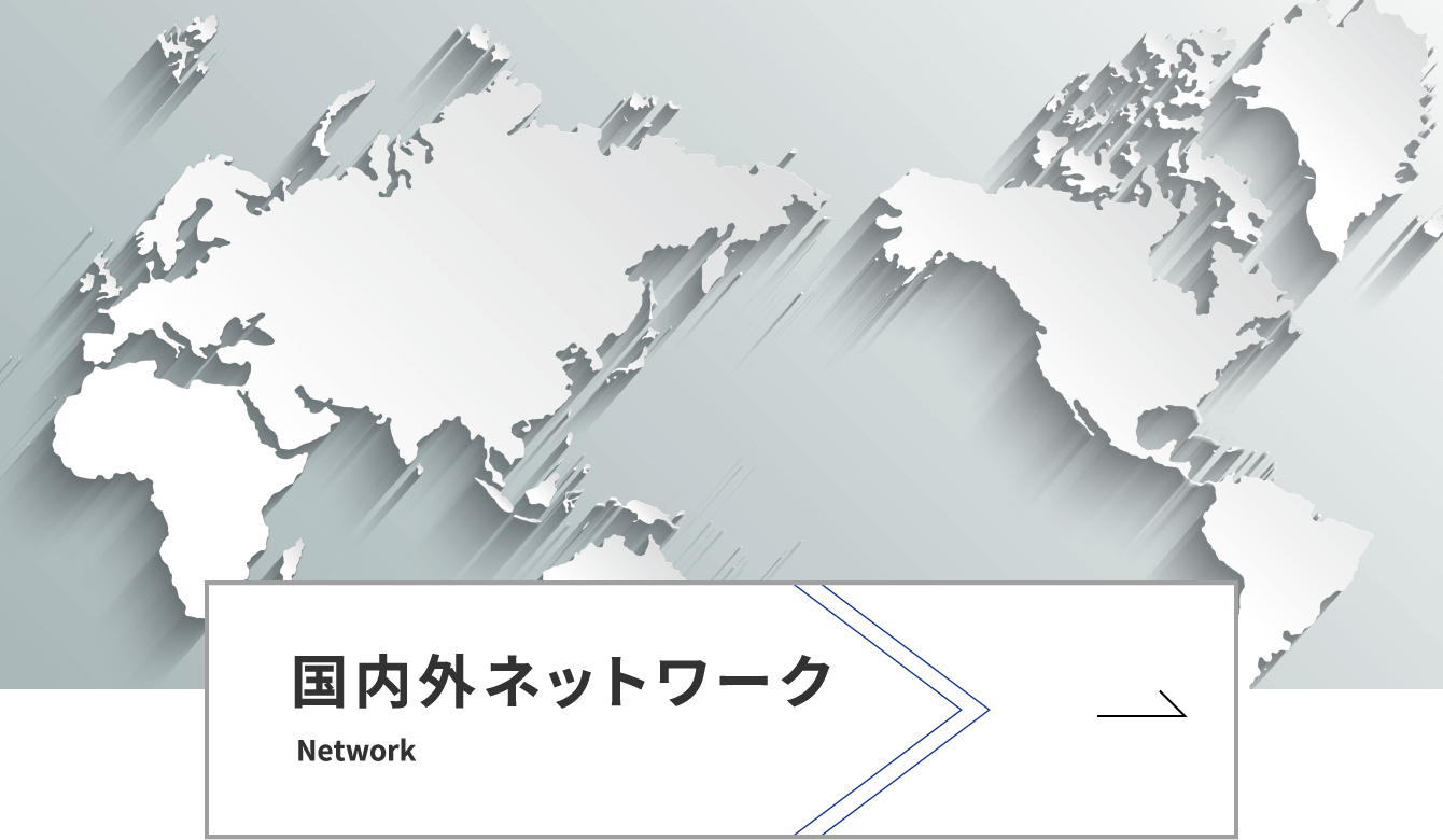国内外ネットワーク